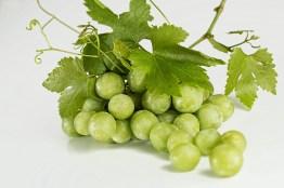grapes-582207_1280