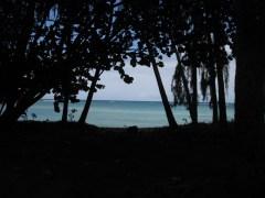 A dream like scene from Turtle Bay