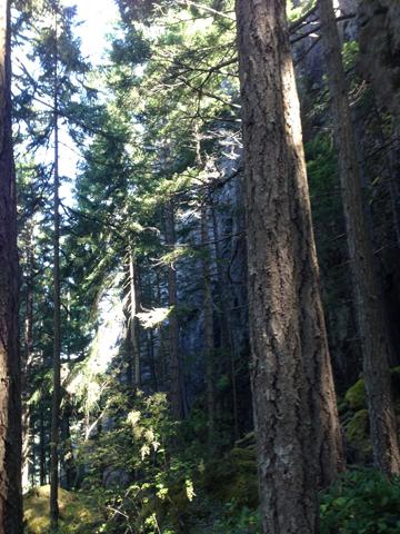 cliff below SugarloafSummit3