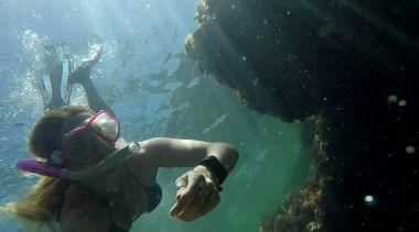 Snorkeling Rottnest Island