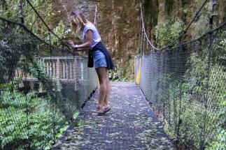 Mangapohue Natural Bridge 3