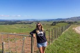 New Zealand Farm Land 4