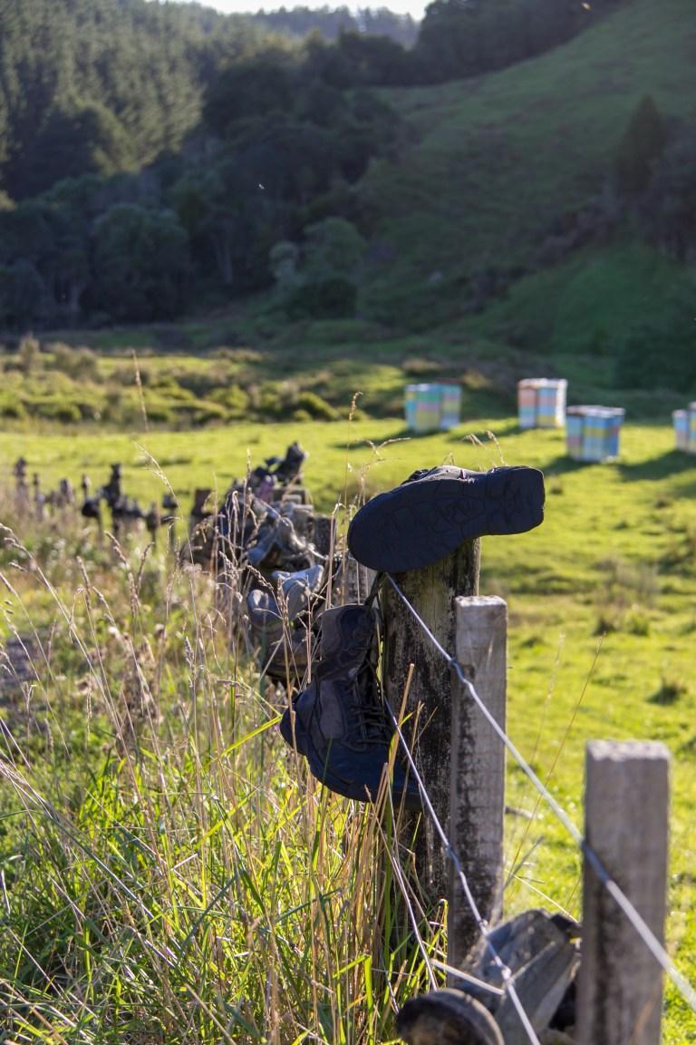 Waitomo Boots