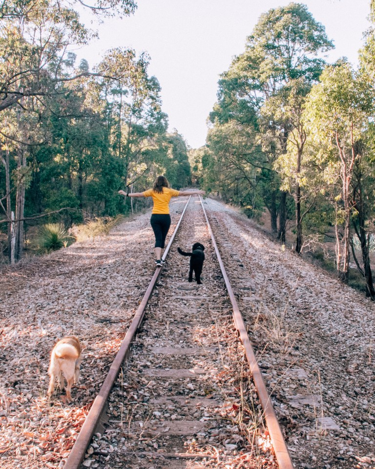 Jarradale Heritage Rail 3