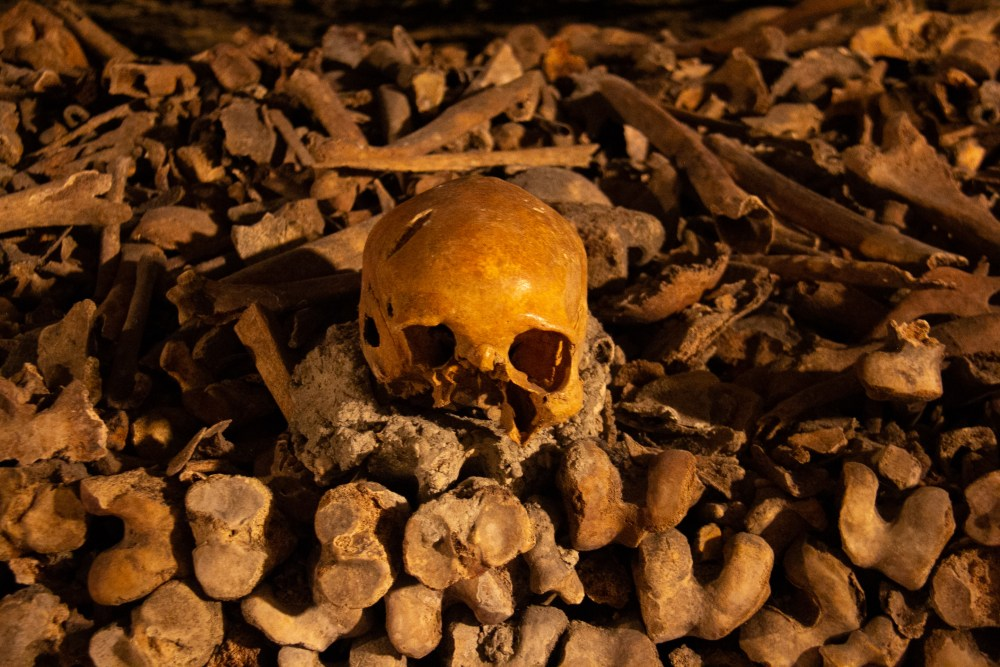Skull at Catacombs of Paris