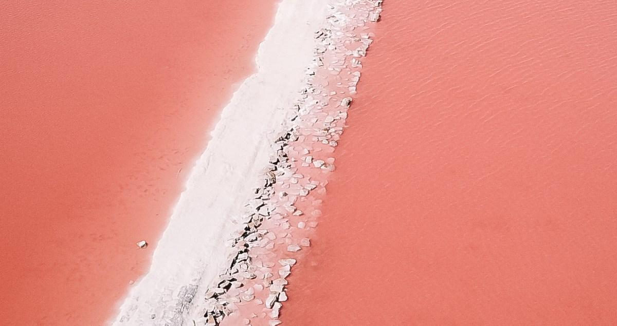 Laguna Rosa Yucatan Mexico North America