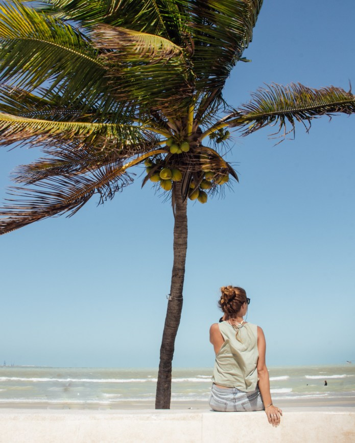 Progresso Beach Yucatan Mexico North America