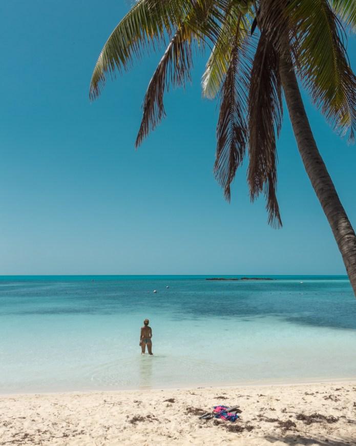Isla Contoy Beach Swim Mexico North America