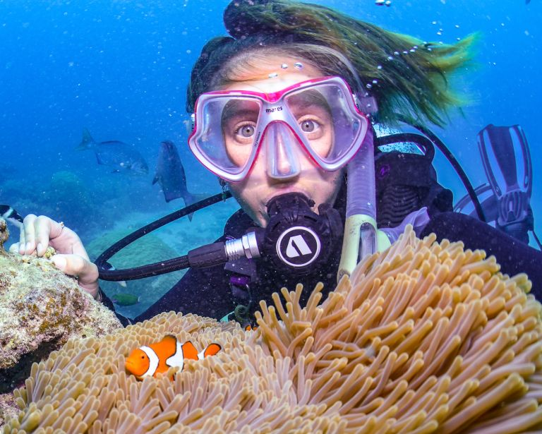 Nemo Great Barrier Reef Cairns Queensland Australia