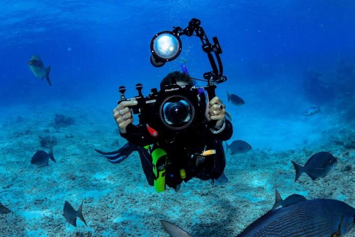 Photographer Great Barrier Reef Cairns Queensland Australia