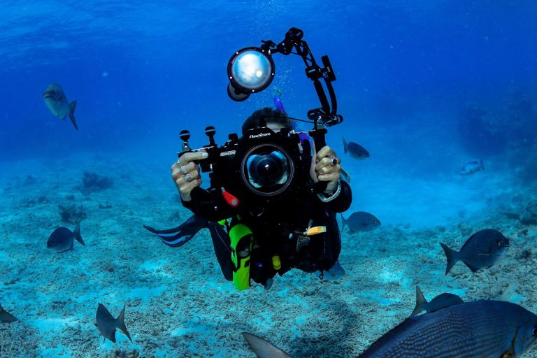 Photographer Great Barrier Reef Cairns Queensland Australia