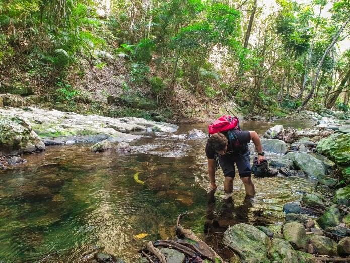 Stoney Creek Crossing Hike Cairns Queensland Australia