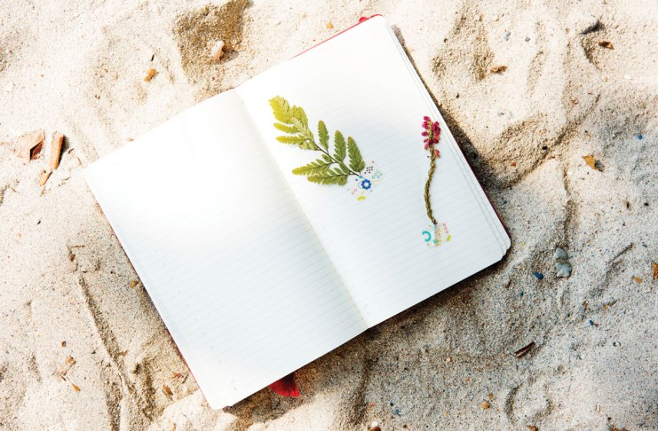 A diary in the beach sand with a flower
