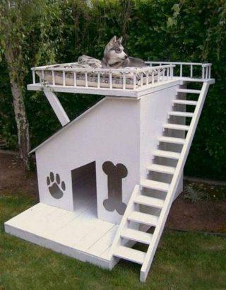 niche pour chien 15 inspirations