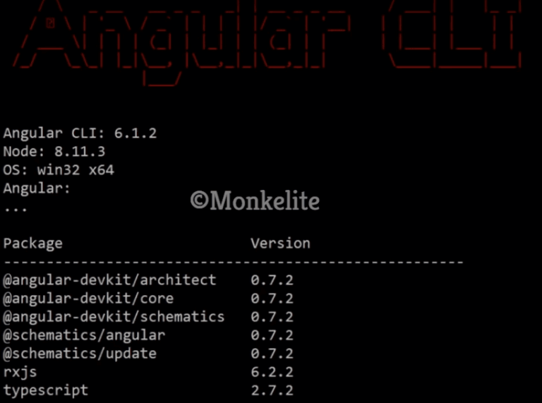 verify version of angular CLI command
