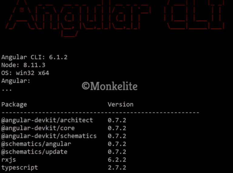 verify version of angular CLI command