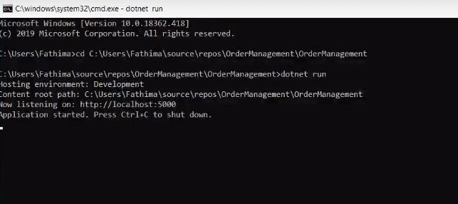 dotnet run in asp.net core