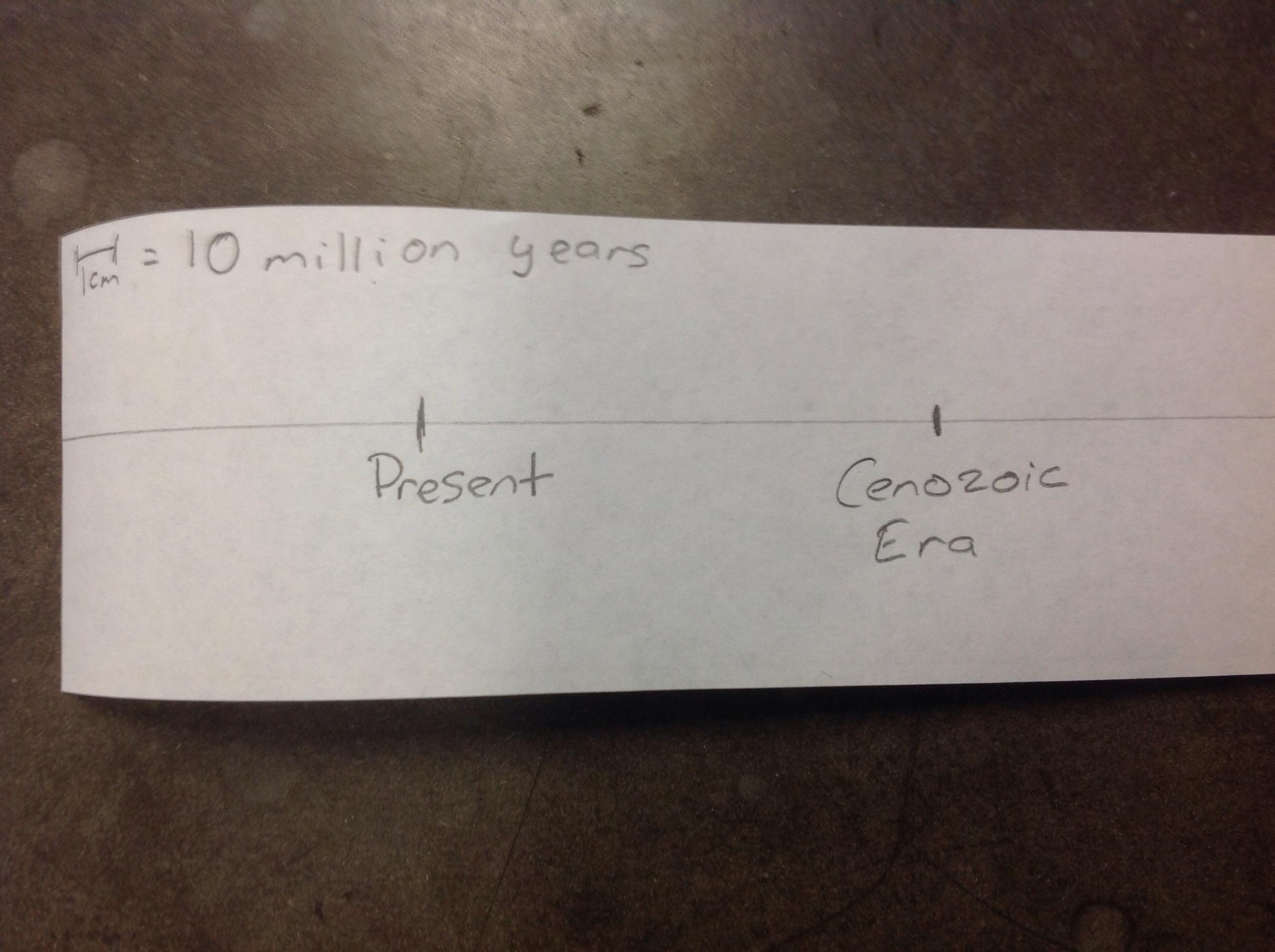 Geological Timeline Samvaughan19
