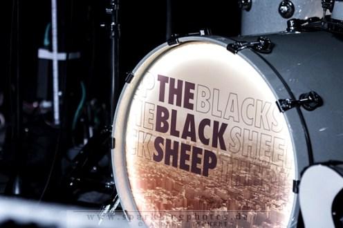 2014-02-17_The_Black_Sheep_-_Bild_001.jpg