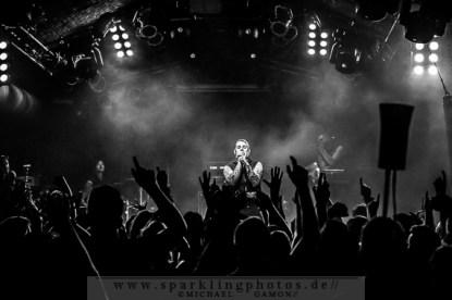 2014-03-26_Combichrist_-_Bild_009x.jpg