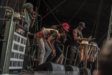 2015-06-27_Mark_Ernestus_Ndagga_Rhythm_Force_-_Bild_001.jpg