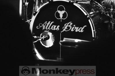 Atlas Bird, © Claudia Helmert