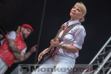 Me First And The Gimme Gimmes © Cynthia Theisinger