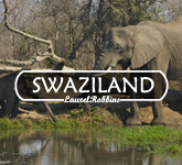 best places to visit in Swaziland for wildlife, nature and adventure travel
