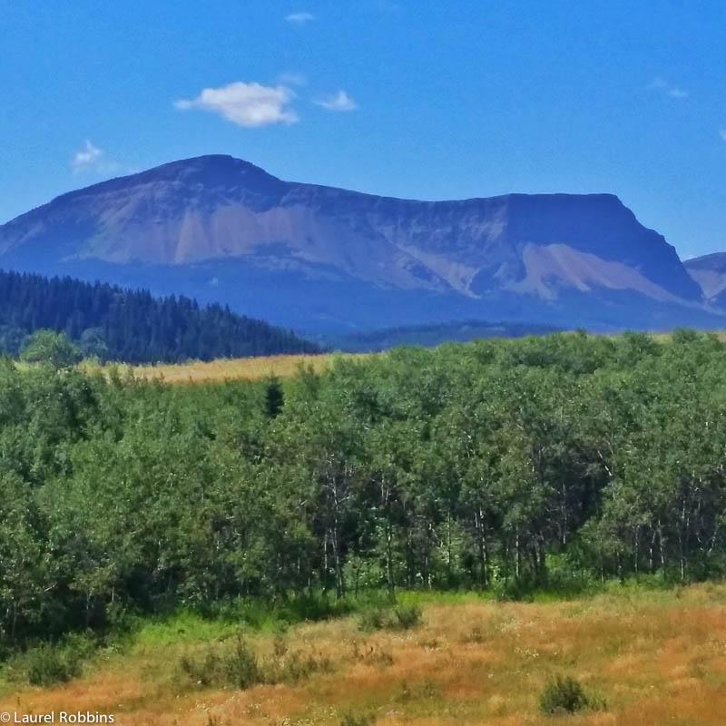 Table Mountain is a great hike/scramble in the Castle Wilderness in SW Alberta.