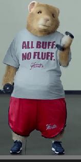 All Buff. No Fluff.