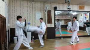 taekkyon training