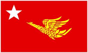 MNP official flags