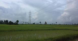Electricity towers and lines seen across local paddy fields (Photo: Naiaung Naing)