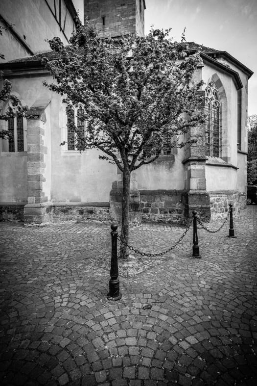 Wissembourg-078820110424 by Roger Schäfer.