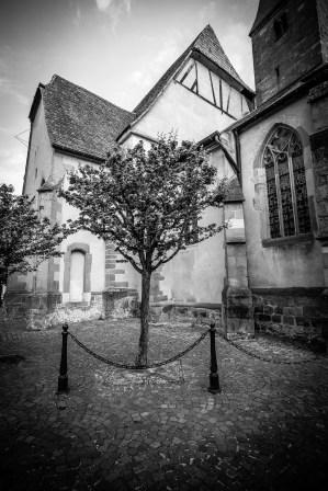 Wissembourg-079120110424 by Roger Schäfer.