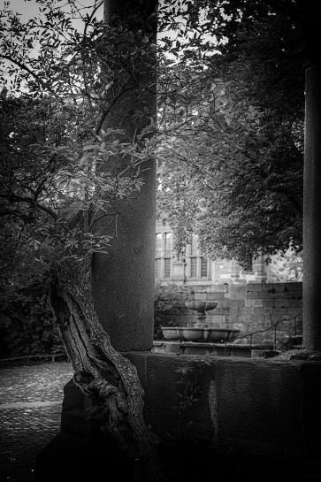 2015-09-27-Heidelberg-L1003081 by Roger Schäfer.