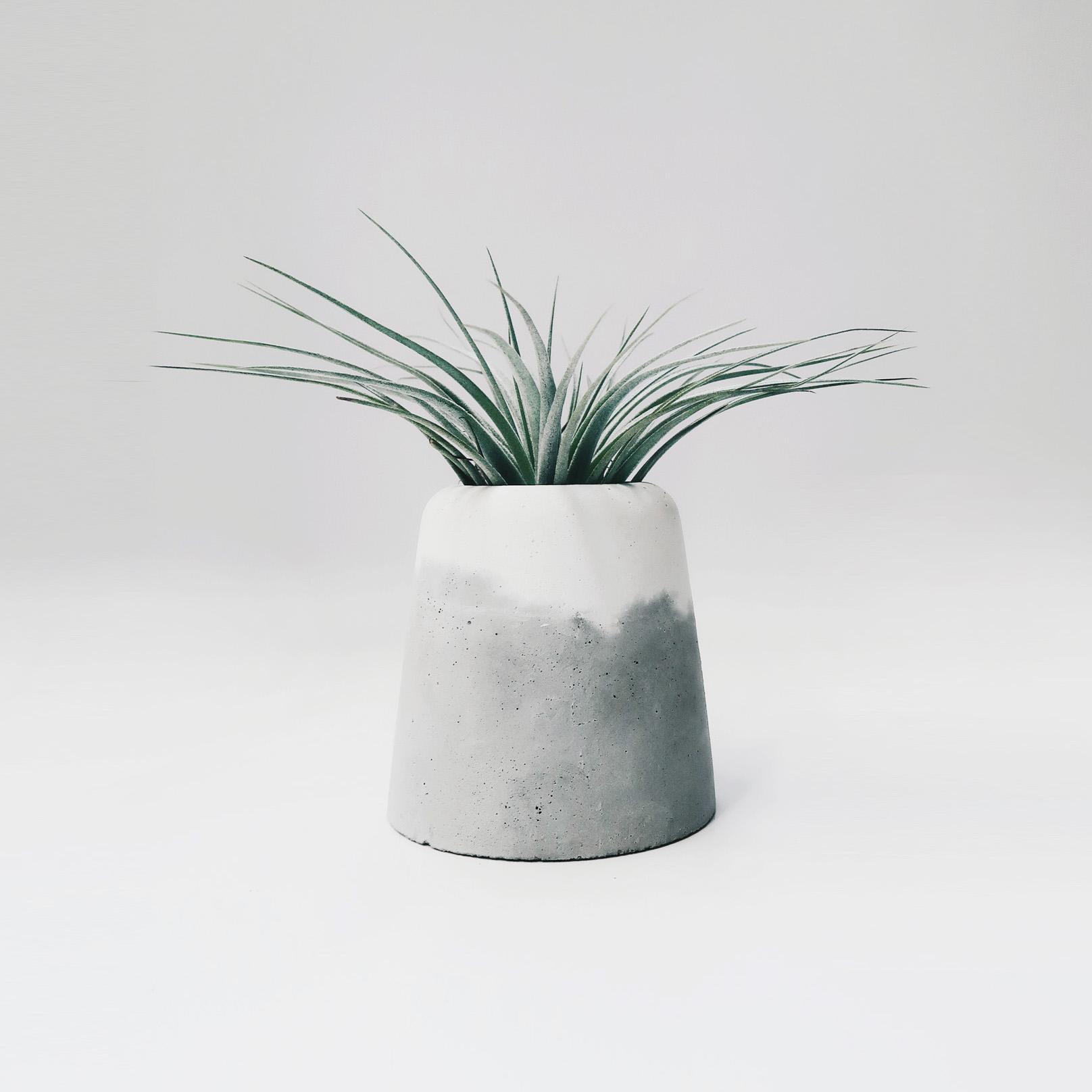 SNOW VOLCAN 大雪火山雙色水泥盆器 / Grey & White Concrete pot