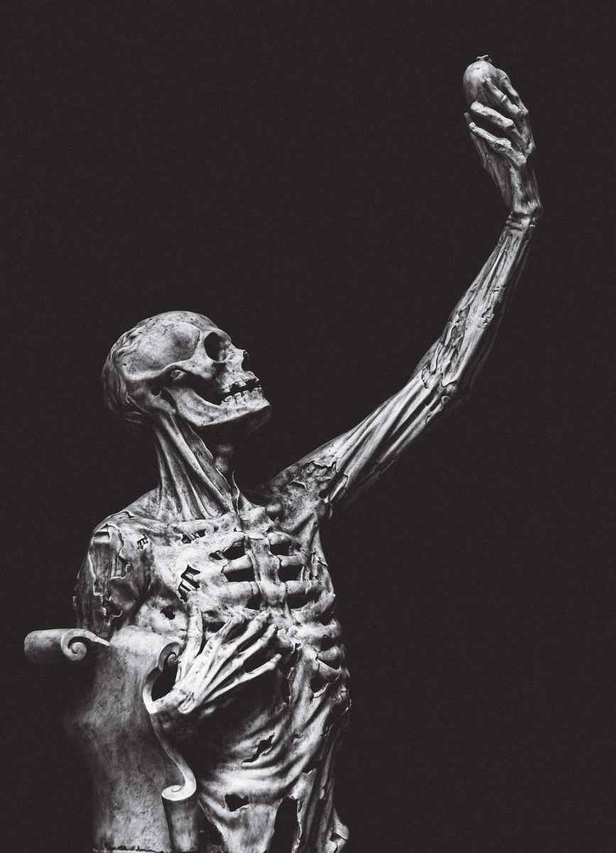 statue of human skeleton on black background