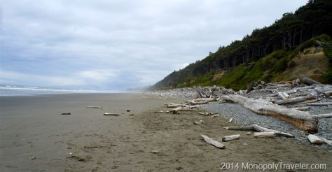 Sandy Beach Littered with Logs