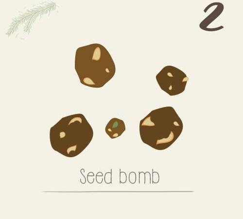 DIY seed bomb pour végétaliser son quartier