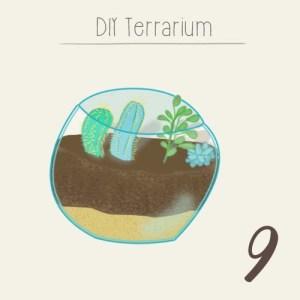 calendrier de l'avent 2015 par mon petit balcon jour 9 - DIY terrarium pour décorer son intérieur de plantes succulentes