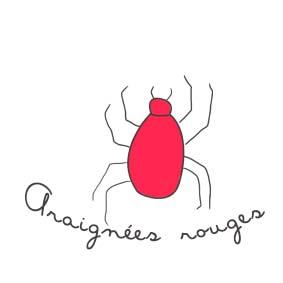 insecticides naturels contre les araignées rouges - potager sur balcon