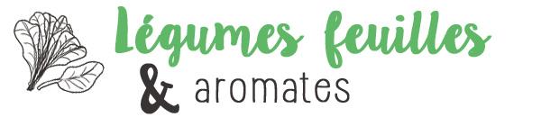 Légumes feuilles et aromates