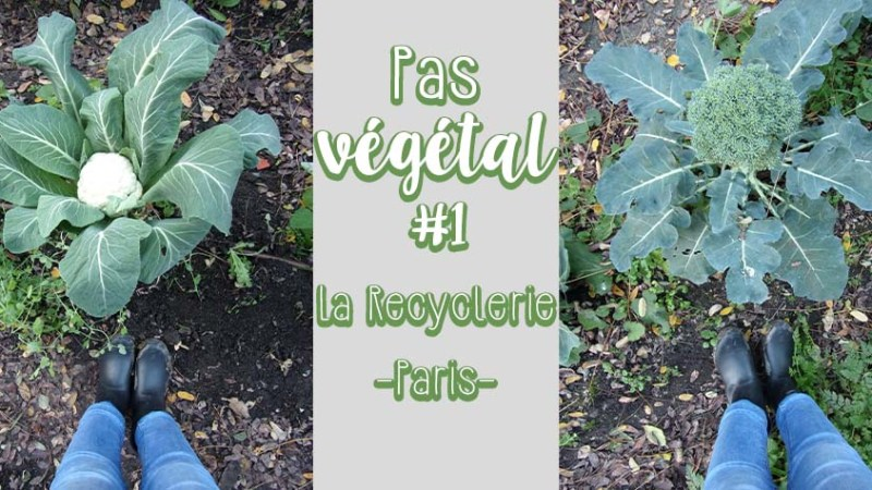 Visite : La recyclerie paris 18e – restaurant, potager et bricolage