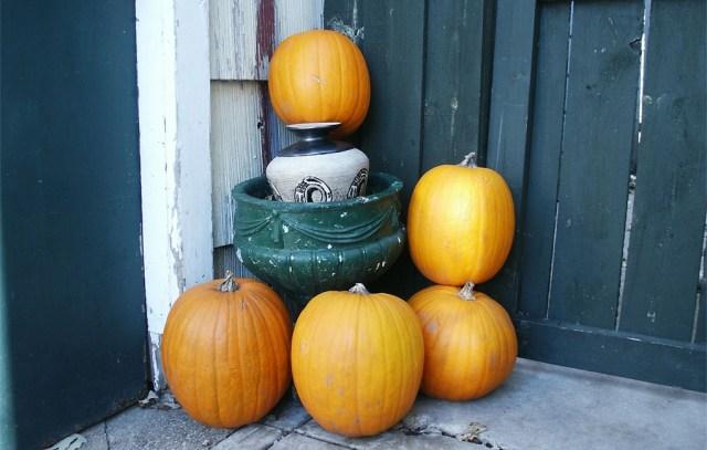 L'automne arrive sur mon petit balcon : courges et potiron