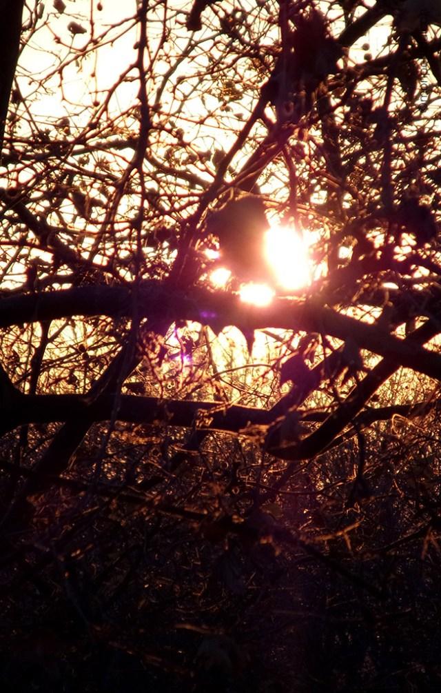 couché de soleil d'automne sur le balcon