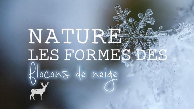 Les formes des flocons de neige