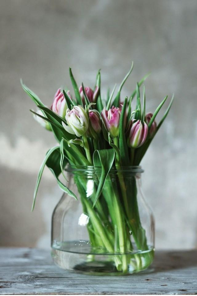 bouquet tulipe perroquet
