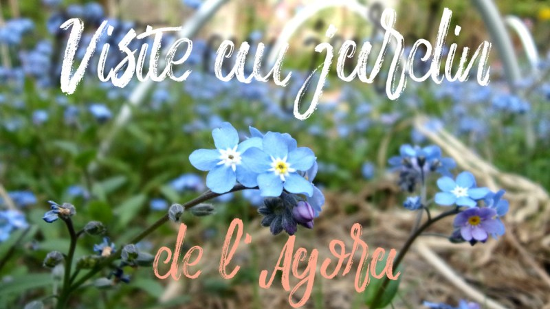 Agora Nanterre : les photos du jardin partagé