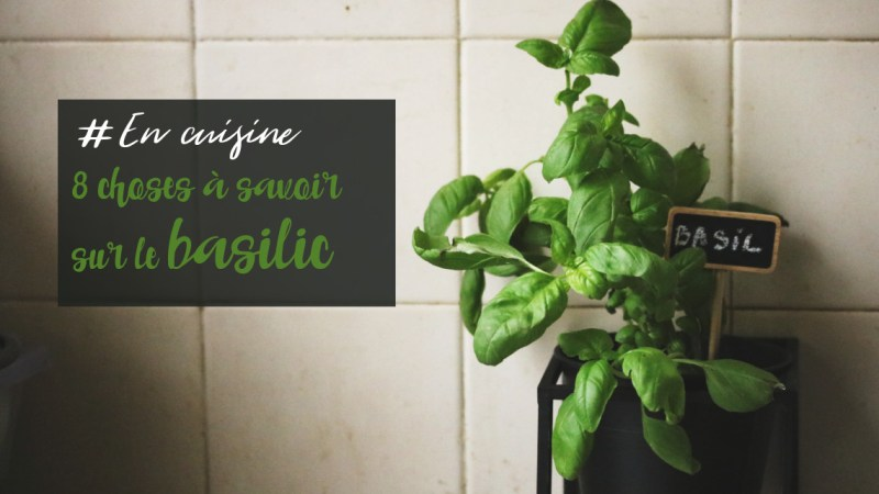 7 choses à savoir pour faire pousser du basilic en pot